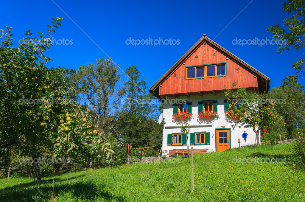 Traditional Alpine House In Apple Orchard Stock Photo