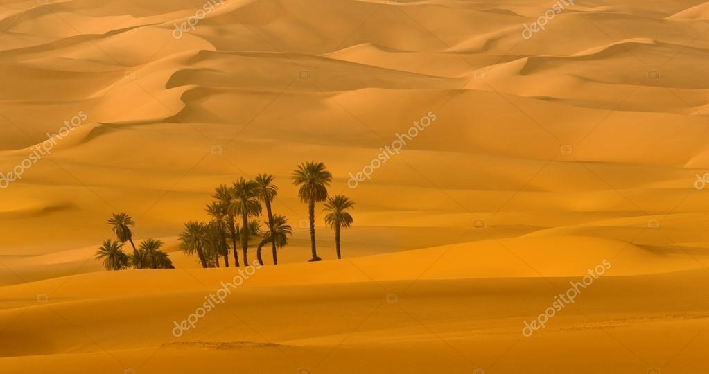 Sandy dunes and palm trees in desert Sahara. Libya.