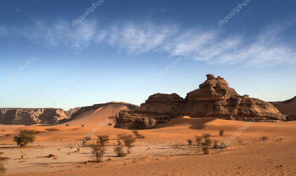 Libyan Desert. Dense gold dust, dunes and beautiful sandy structures in the light of the low sun