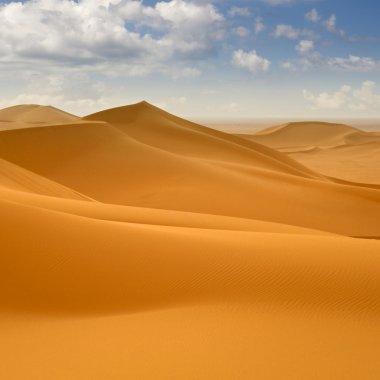 Libyan Desert. Dense gold dust, dunes and beautiful sandy
