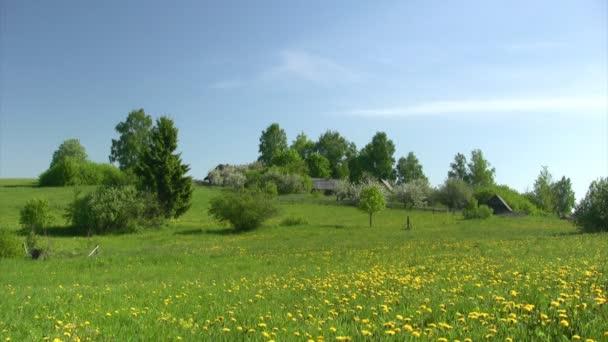 ländliche Landschaft mit Apfel-Garten