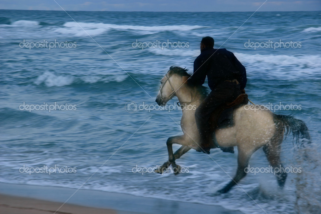 silhouette of horserider on storm sea background