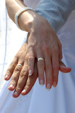 Wedding rings on the hands of newlyweds
