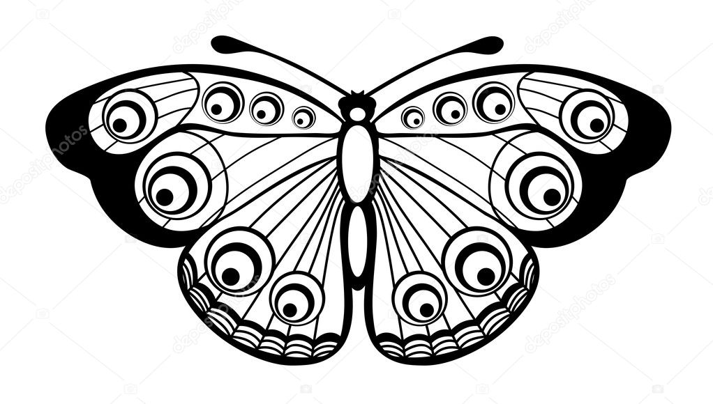 Hermosa Mariposa Blanco Y Negro Aislado En Blanco