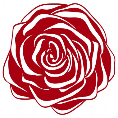abstract red and white rose. Many similarities to the author's profile