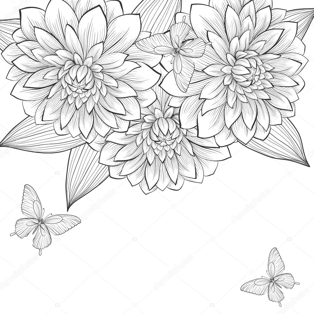 beautiful monochrome black and white background with frame of dahlia flowers and butterflies