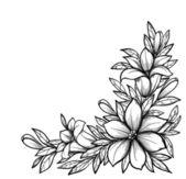 krásné černé a bílé větev s květinami