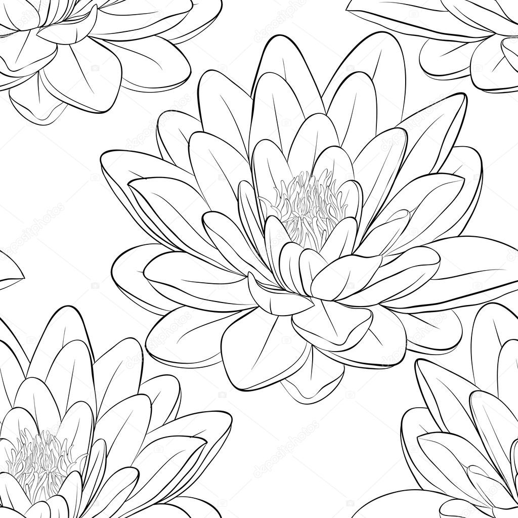 Beautiful monochrome, black and white seamless pattern with lotus flowers.