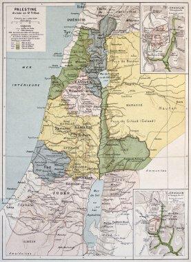 Palestine tribes