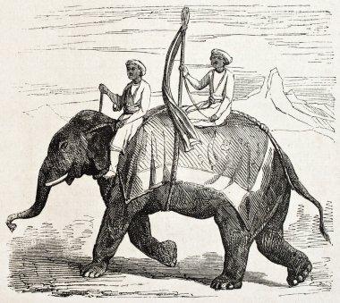 Oude elephant