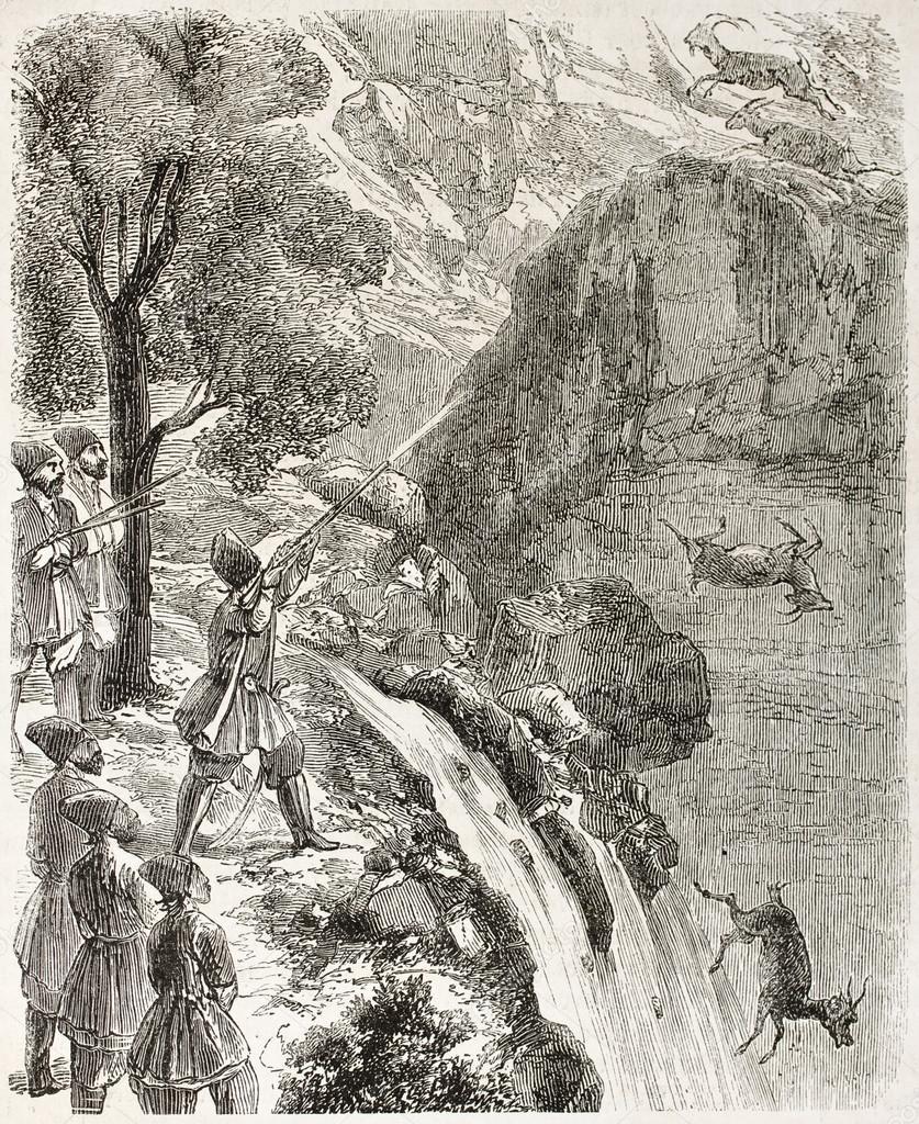 Chamois hunting