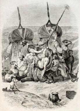 Camel palanquin