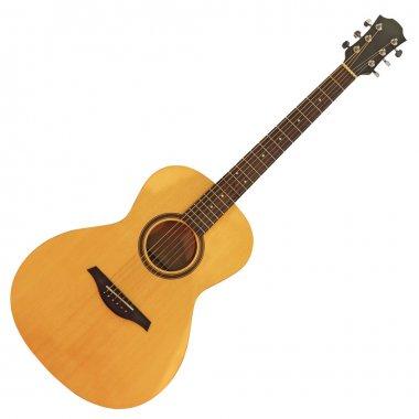 Acoustic guitar2
