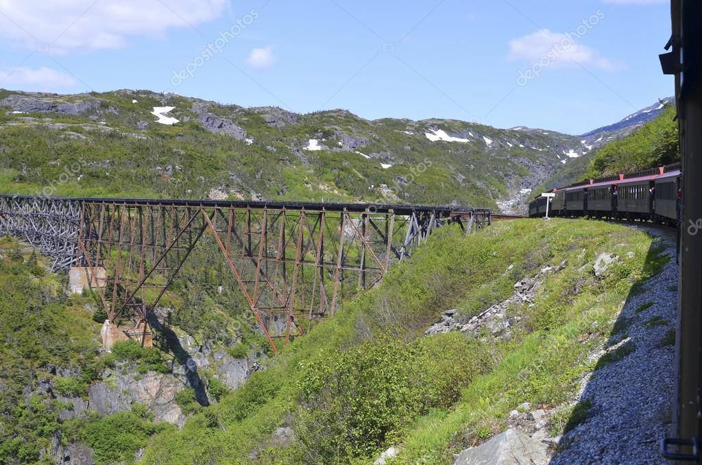 Old railway bridge and train