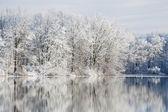 zimní odrazy jackson hole jezero