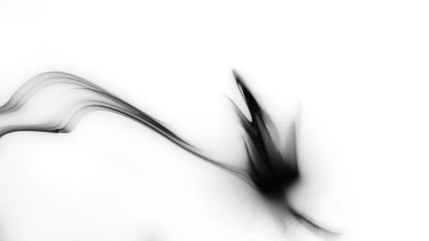 inkoust postříkat na bílém pozadí. inkoust přesahu bloom. Černá rozšíření