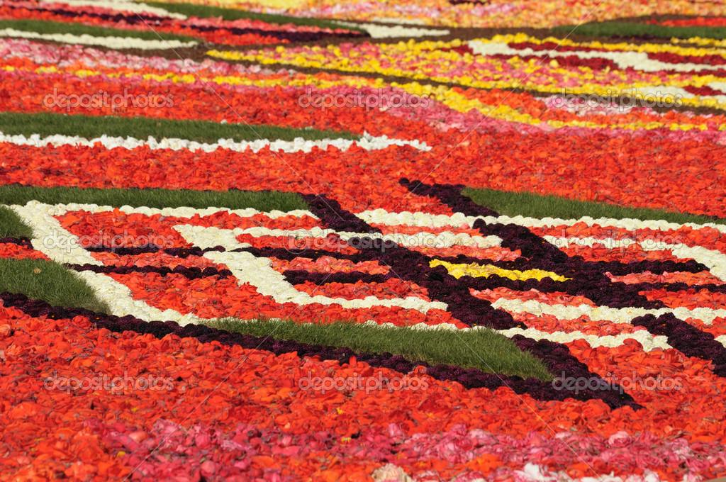 Tappeto Floreale Bruxelles : Belgio il tappeto di fiori della grand place festeggia l amicizia