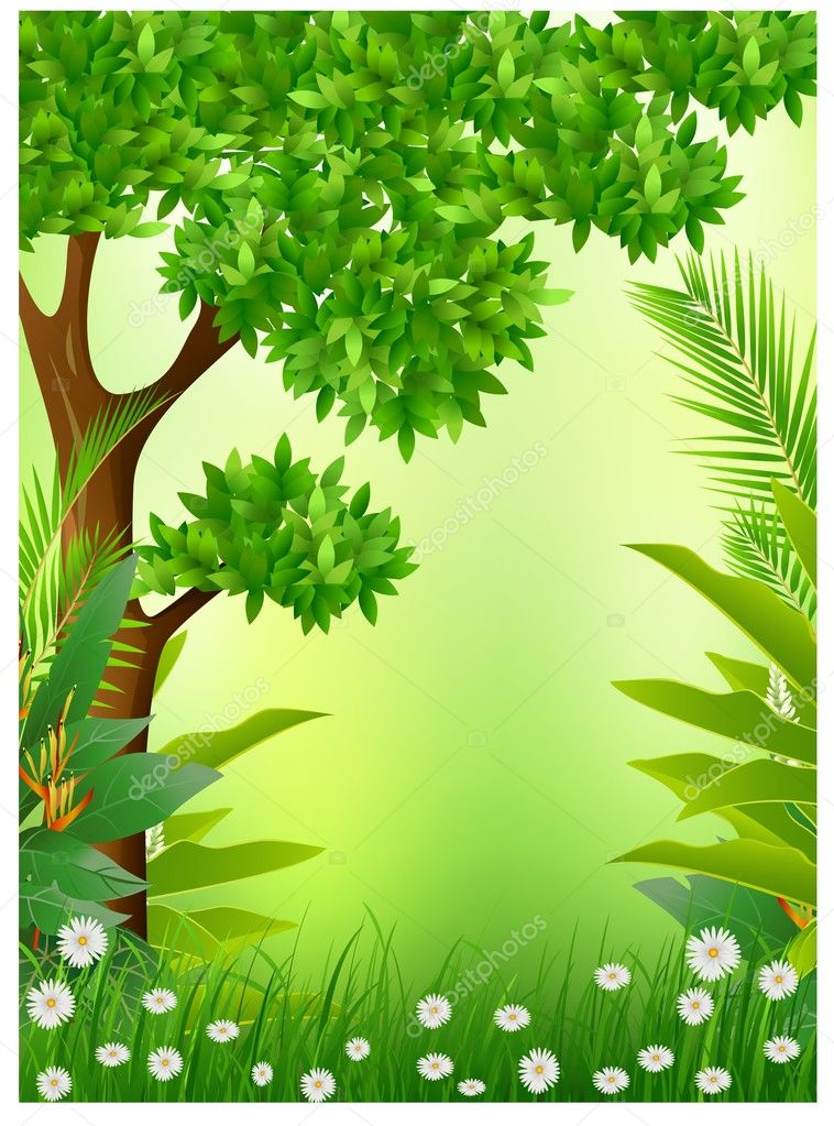 Beauty tropical forest background