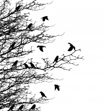 Tree silhouette with birds