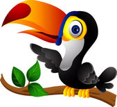 Photo Toucan bird cartoon presenting
