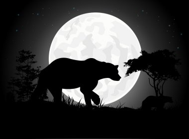 Beautiful Bear silhouettes