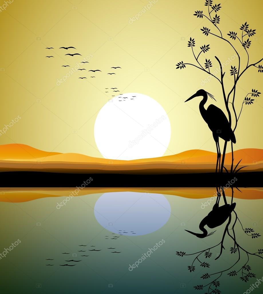 Heron silhouette on lake