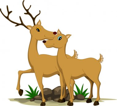cute couple deer cartoon