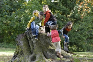 a group of children playing on a trunk
