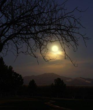Moonrise over the Santa Rita mountains