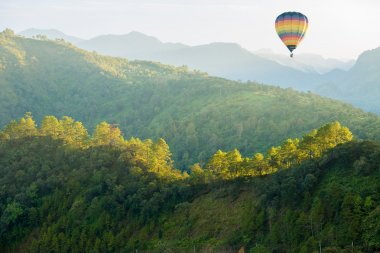 Green forest mountain with hot air balloon