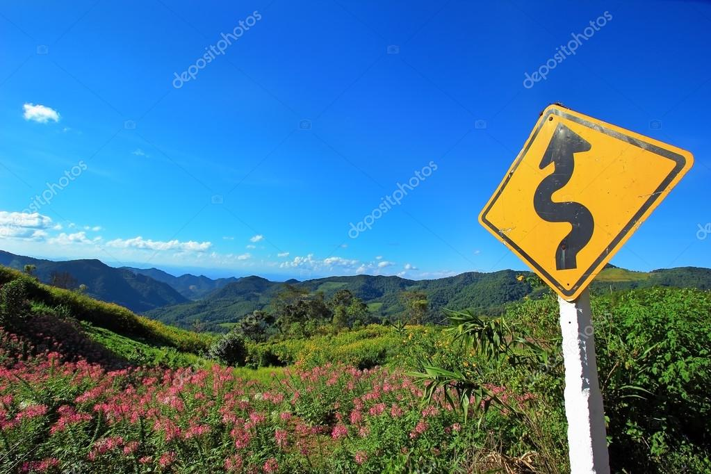 winding road sign with flower bloom on mountain