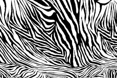 Zebra texture fabric style.