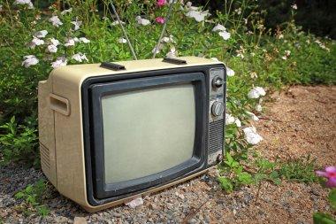retro tv on on flower field