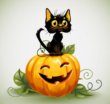 Black cat on Halloween pumpkin