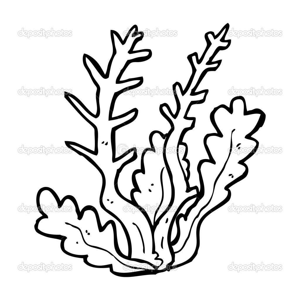 free sea plants coloring pages - photo#40