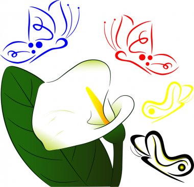 White flower and butterfly