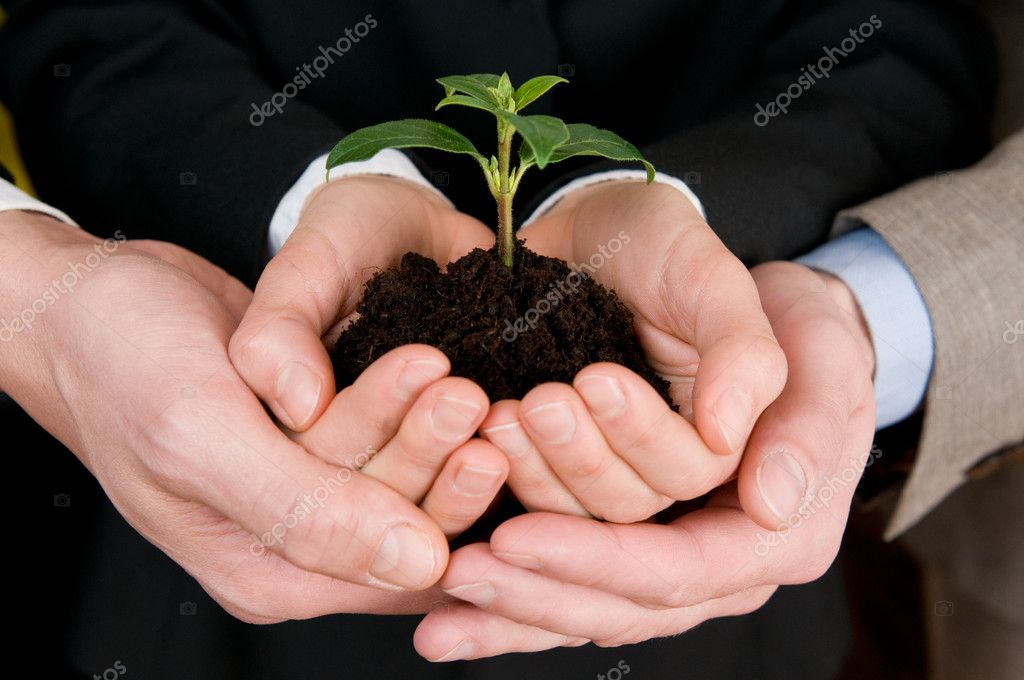 Growing green business