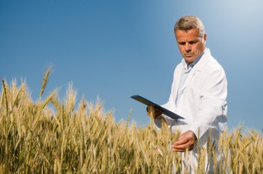 Quality control in wheat field
