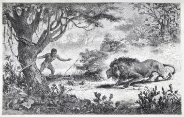A Betschuana tribe man finds his brother eaten by a lion