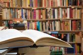 Fotografie Otevřít knihu v knihovně