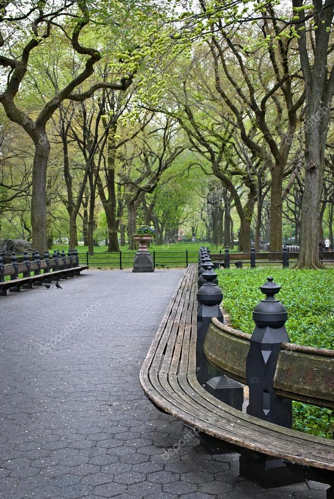Benches Central Park Stock Photo C Andykazie 12334068