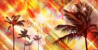 Exotic Palm Tree at sunset