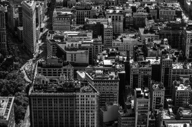 New York City Landscape in Black and White