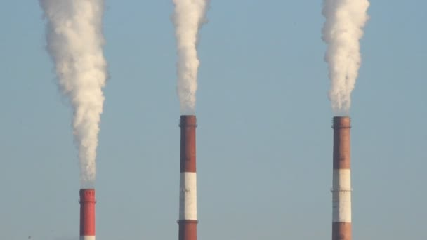 Wärmekraftwerk, der Rauch aus dem Schornstein. Erzeugung, Energie