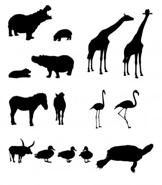 Masked animals