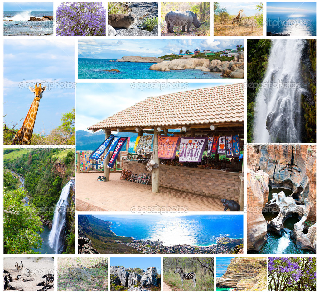 African Wild Animals Collage Fauna Diversity In Kruger Park Natural Themed Collection Background Beautiful Nature Of South Africa Wildlife Adventure And