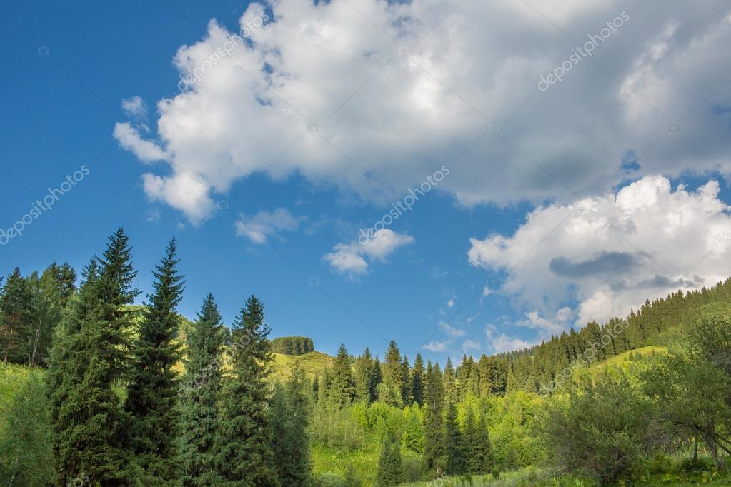 Nature of green trees and blue sky, near Medeo in Almaty, Kazakhstan,Asia at summer