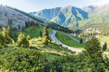 Nature near Big Almaty Lake