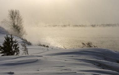 The snow-covered grass and trees on the river bank