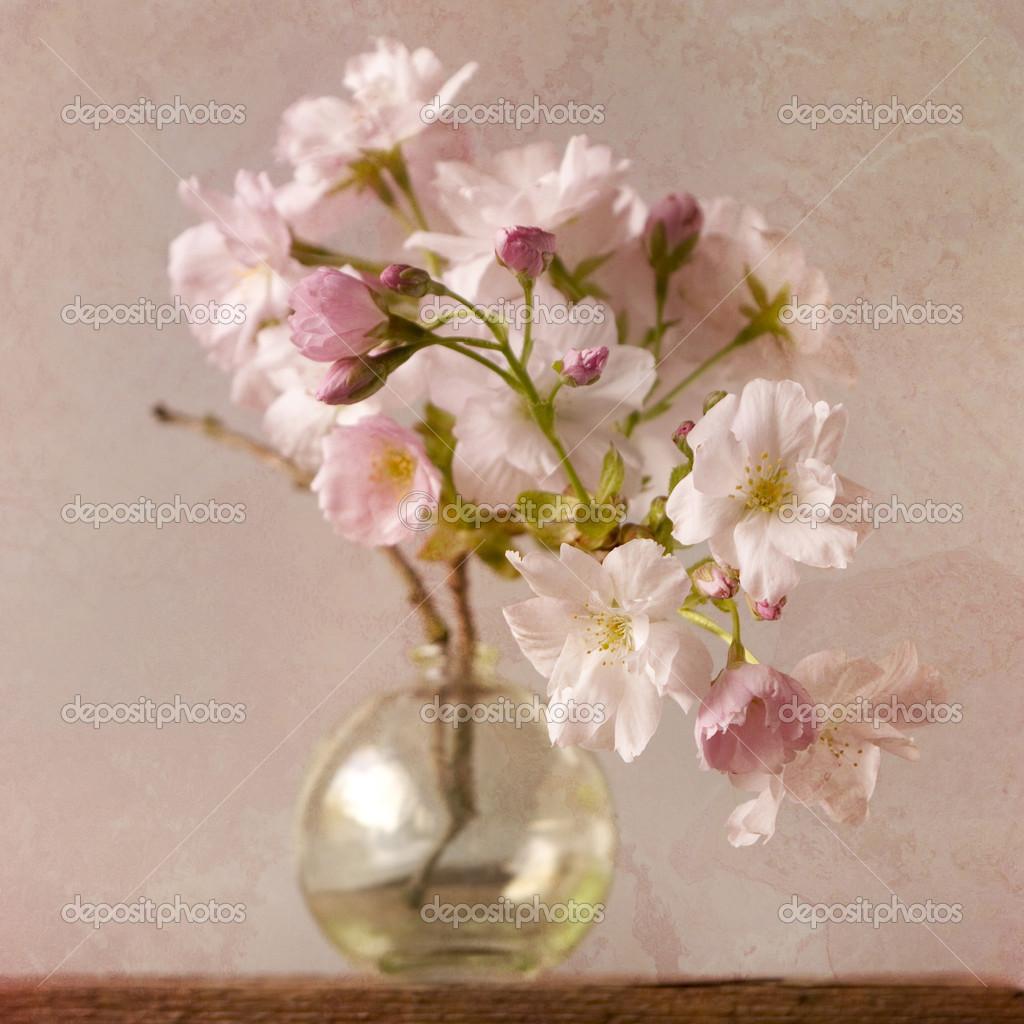 Belles fleurs dans un vase transparent blanc — Photographie piolka © #12507220